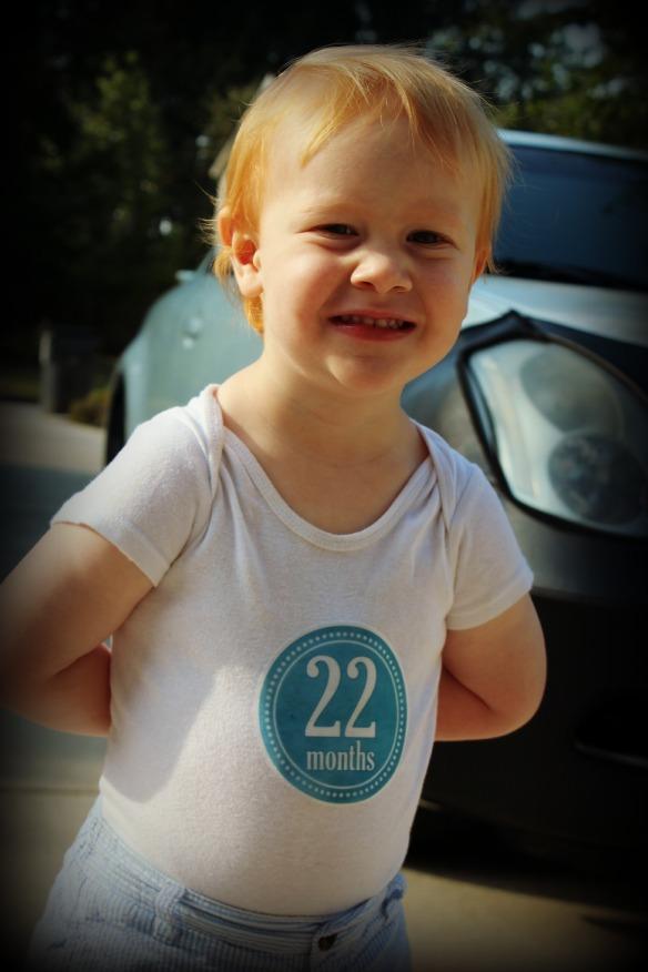 22 months 2