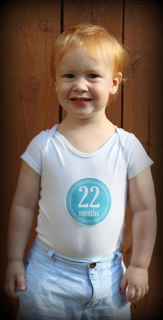 22 months 3